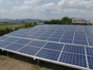 自社の太陽光発電所です!!